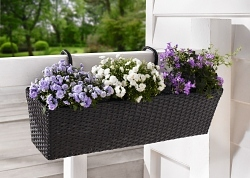 Balkon-Pflanzer Polyrattan schwarz