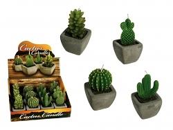 Kerze Kaktus im Blumentopf
