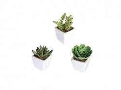 Kunstpflanze Sukkulente in Keramiktopf