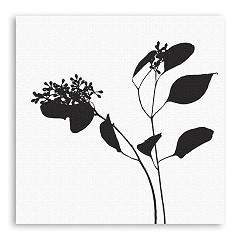 Silly Gifts Wandbild Design Flower weiß 78x78cm