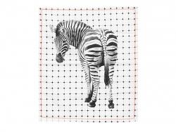 Presenttime Geschirrtuch Zebra